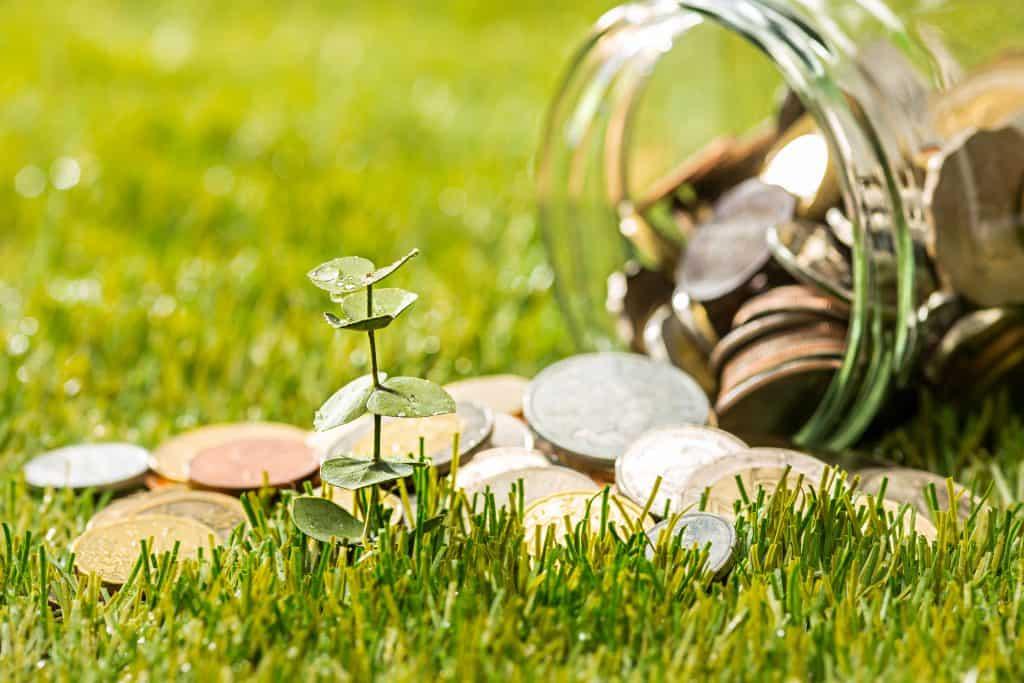Catégorie Finance et Économie du blog de Tomate & Basilic