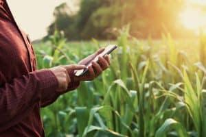 Utilisation d'un smartphone dans la nature