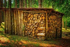Collecter et stocker l'énergie : 2ème principe de conception de la permaculture