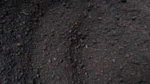 Biochar ou terra preta